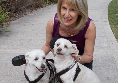 Vicki-pet-sitting-dog-walking-white-dogs-vicki